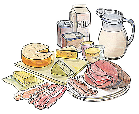 drawing of meat and dairy products