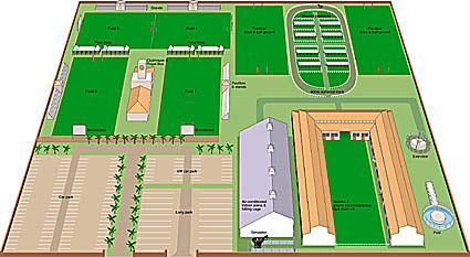 3D plan of sports ground